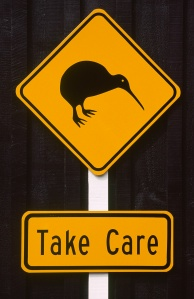 take care kiwi image